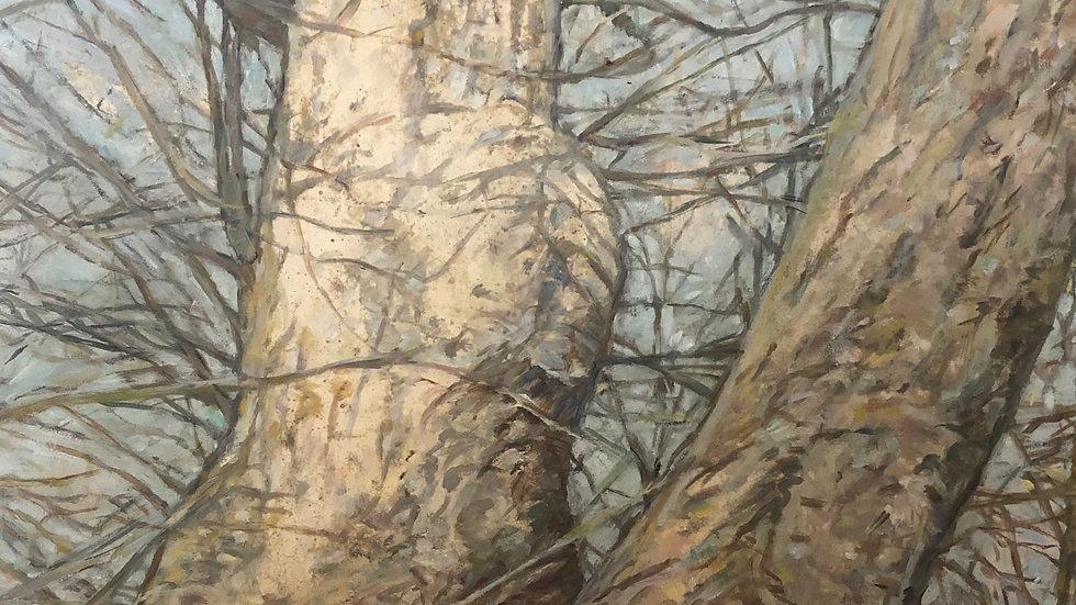 Junction by Leslie K. Brill