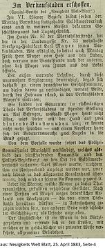 Mayer Karl Bericht 1883