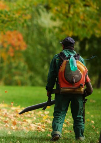 leafblower-cropped2.png