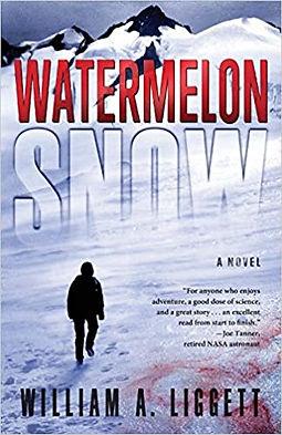 Watermelon snow.jpg