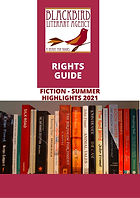 Rights Guide Fiction Summer Highlights 2021