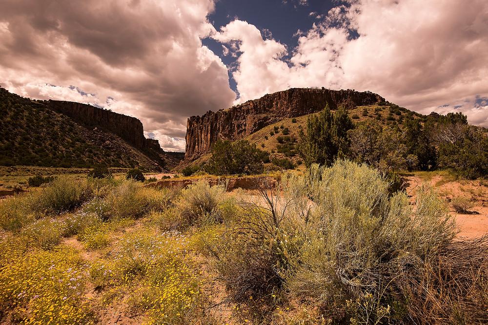 Photo courtesy of Bureau of Land Management via Flickr - https://flic.kr/p/xgeDMp