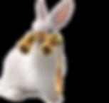 White_Rabbit-opera_glasses-removebg-prev