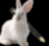 White_Rabbit-fountain_pen-removebg-previ
