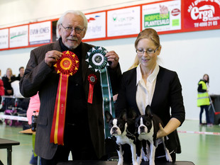 Puppy show - Norwegian Kennel Club