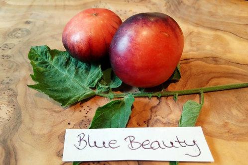 "Tomate ""Blue Beauty"""