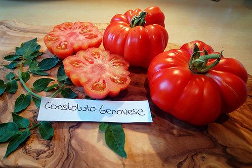 """Tomate """"Constoluto Genovese"""" - Italienische Fleischtomate"""