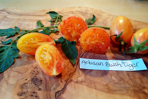 """Tomate """"Artisan Blush Tiger"""""""