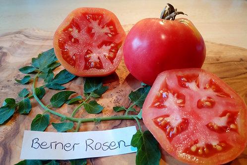 """Tomate """"Berner Rosen"""" - Besonders aromatisch"""