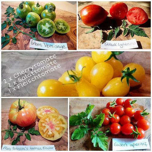 Kleines, buntes Tomaten-Paket 🍅