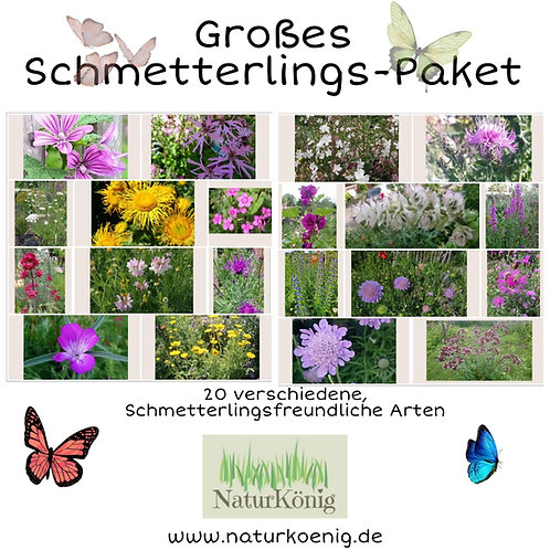 Großes Schmetterlings-Paket 🦋