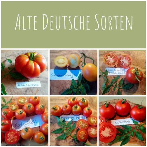 "Tomaten-Paket ""Alte & historische Sorten"""