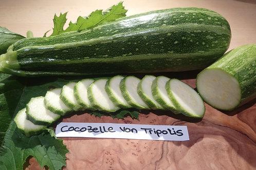 "Zucchini ""Cocozelle von Tripolis"""