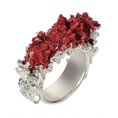 Kelvin Birk jeweller ring