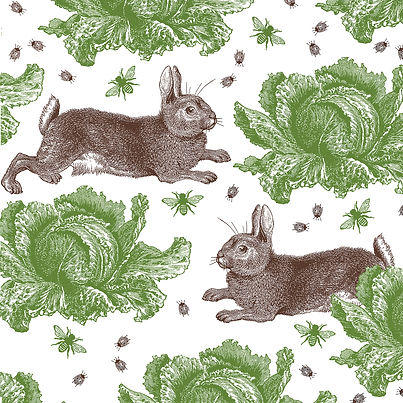 Rabbit & Cabbage graphic by Thornback & Peel