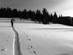 1 xc ski.jpg
