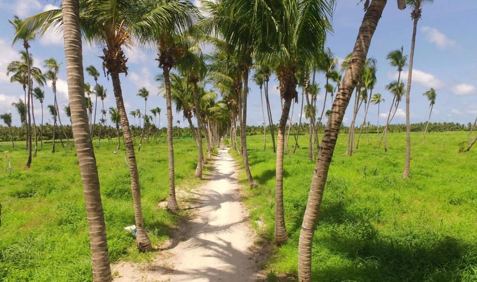 Island Hopping | Acqua Blu Rasdhoo