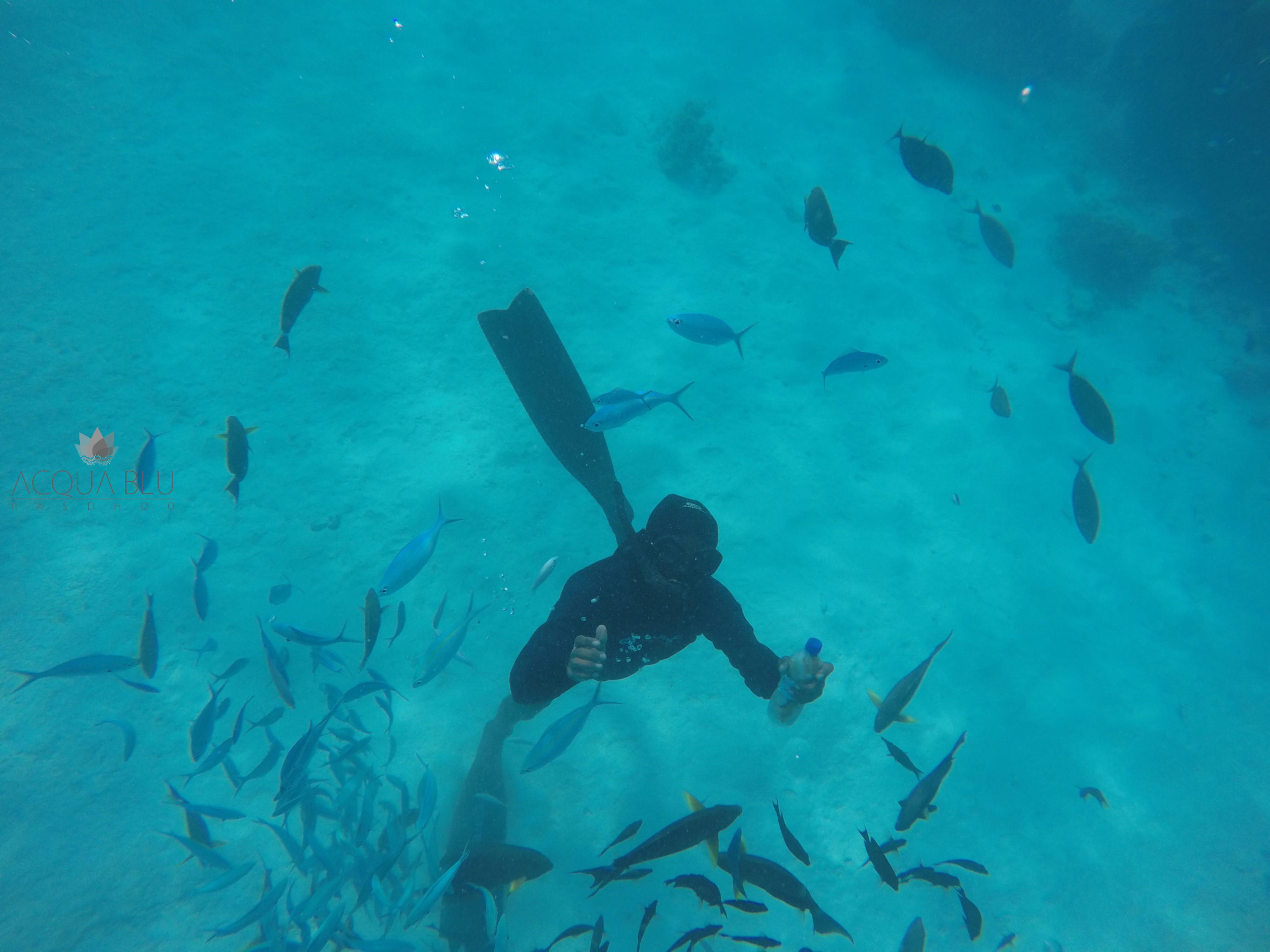 Snorkeling | Acua Blu Rasdhoo