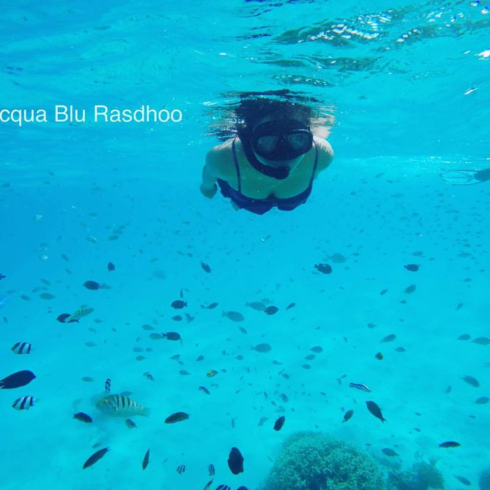 Fish Feeding | Acqua Blu Rasdhoo