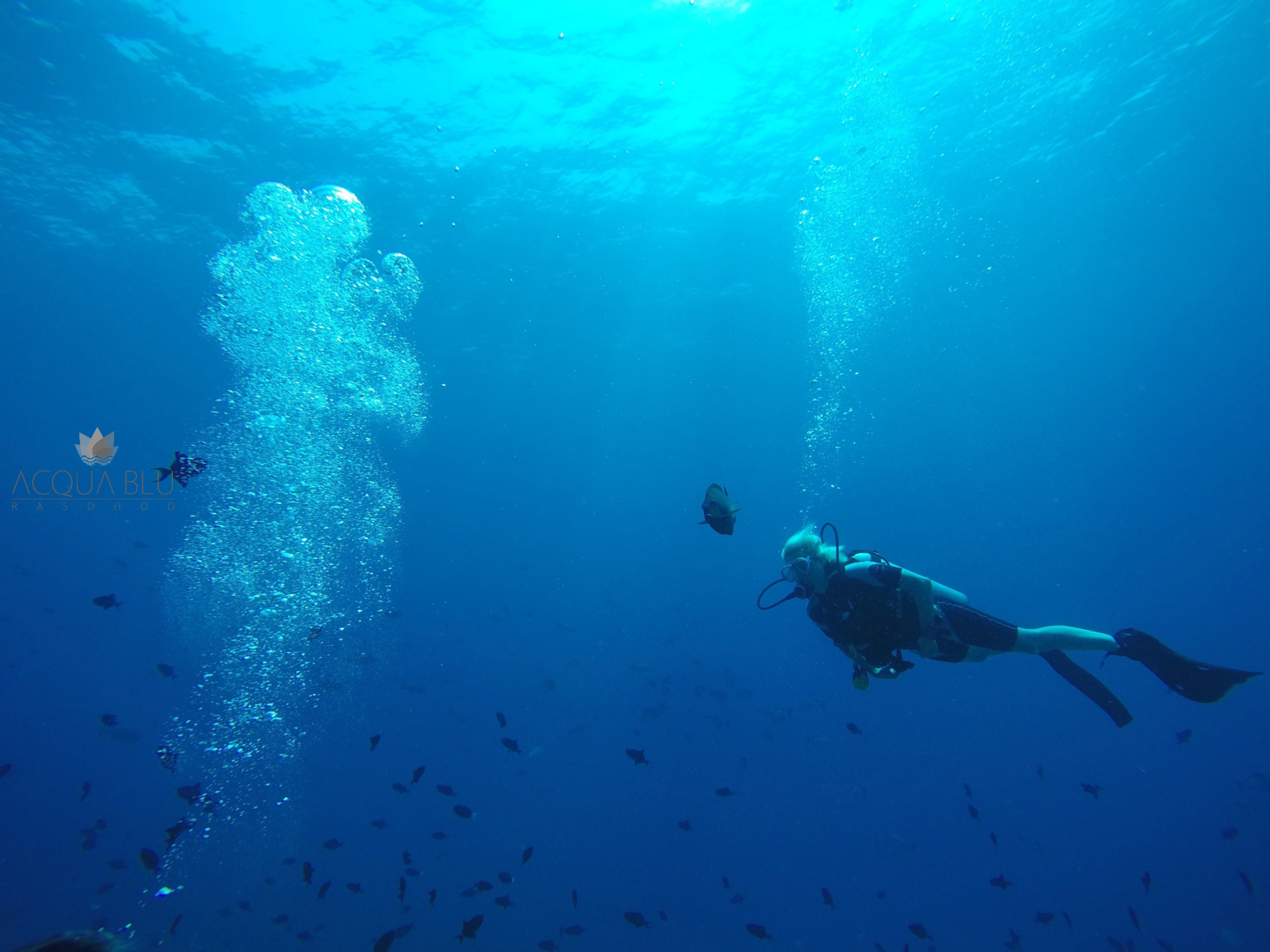 Scuba Diving | Acua Blu Rasdhoo