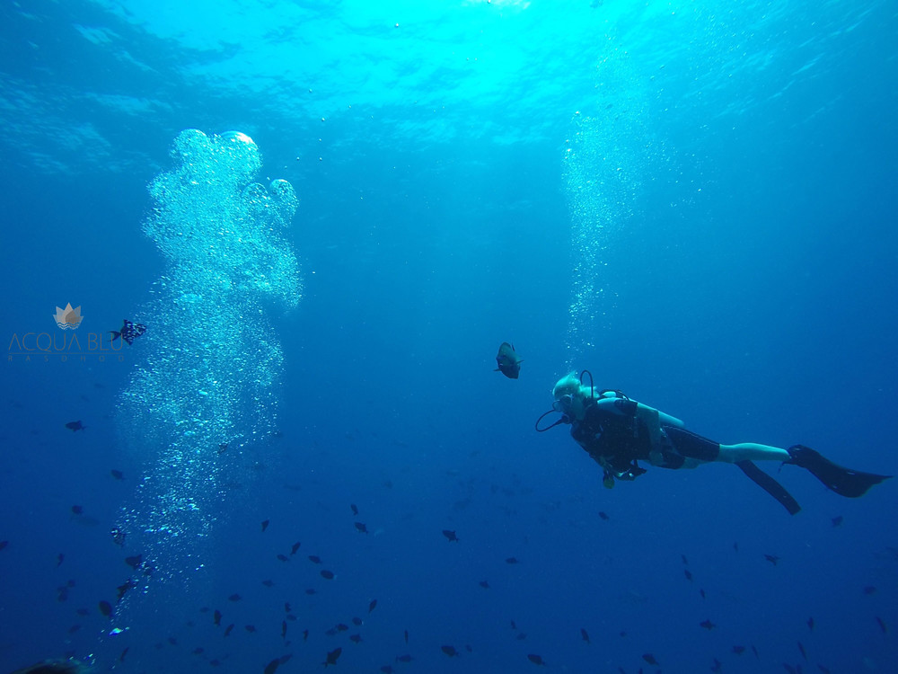 SCUBA Diving | Acqua Blu Rasdhoo