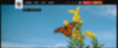 Screen Shot 2020-07-24 at 1.20.57 PM.png