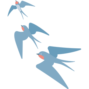 Birds .png