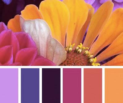 A Pop of Color