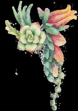 bouquet 6.png