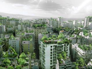Las azoteas como elemento de paisaje urbano