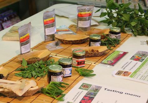 Kids' bushfoods workshop