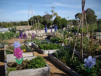 Woodend PS - Stephanie Alexander Kitchen Garden