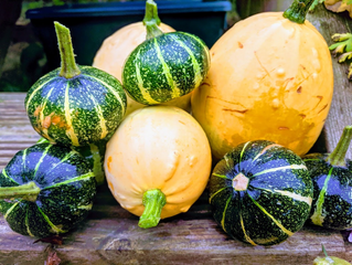Gourds Galour