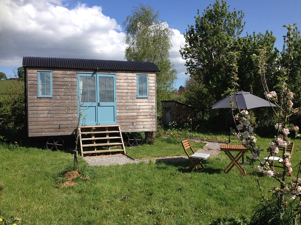 Stocklinch Shepherd's Hut in the sun....