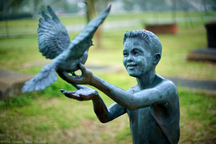 boy and dove