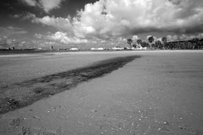 Lake Charles beach
