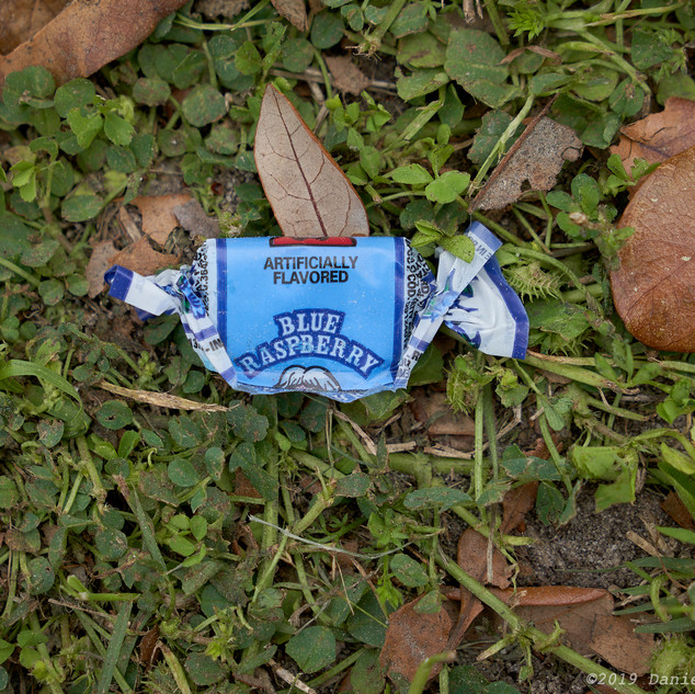 Parade leftover - blue raspberry