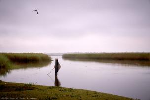 Black Bayou near dawn