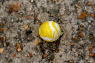 Lost yellow ball