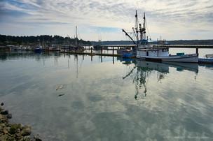 Chelsea Rose in harbor