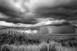 Squall over the wetlands