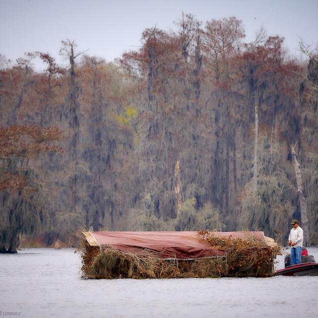 Fishing, Lake Martin