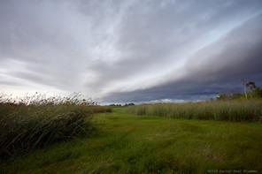 Approaching weather, coastal marsh