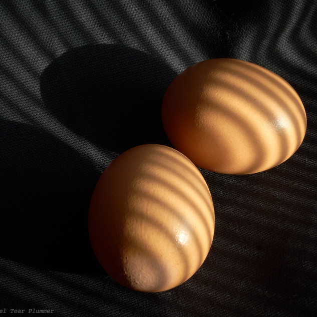 Egg contours