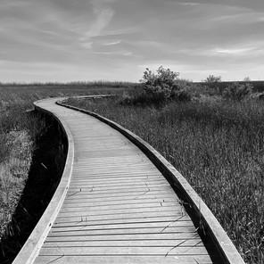 Sabine walkway 1