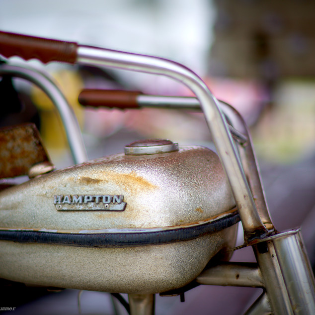 Hampton cycle ride