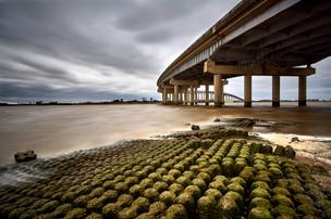 Blustery day I-210 bridge