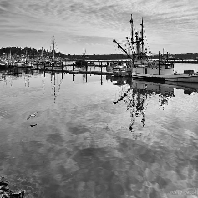 Chelsea Rose in harbor - bw