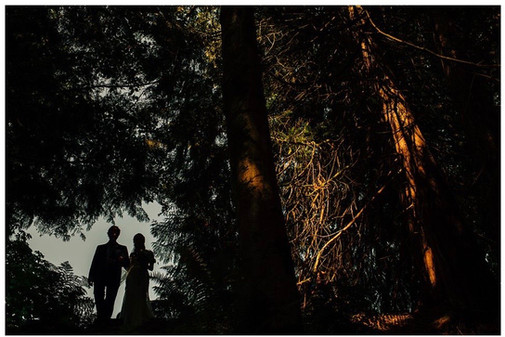 Father/daughter silhouete