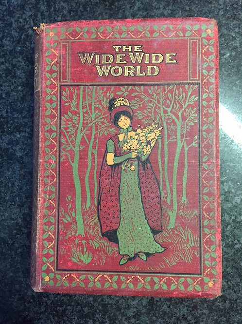 The Wide Wide World by Elizabeth Wetherell